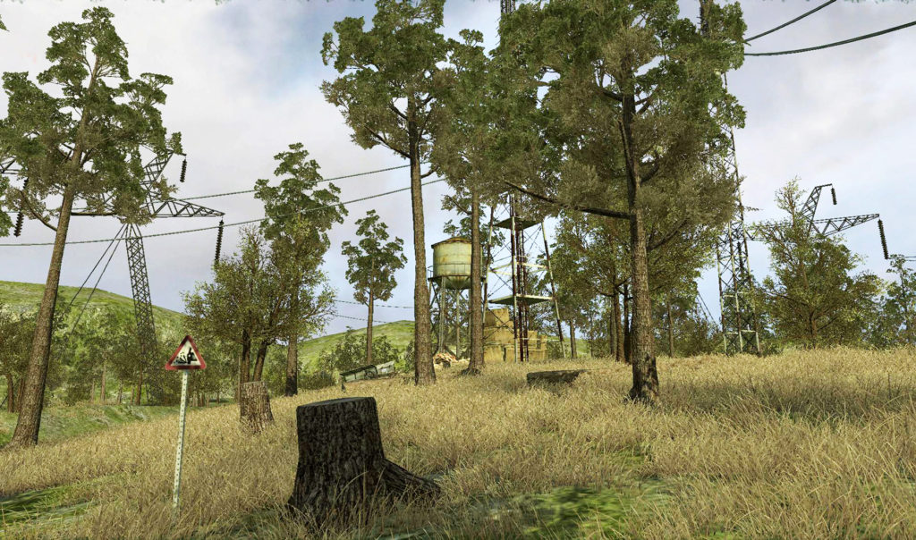 CoD: Forest Map